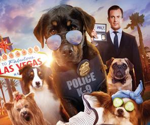 סרט: מילה של כלב