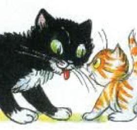 קסם הסיפור: החתול ששכח לדבר חתולית